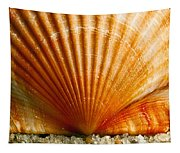 Sunrise On Shell Tapestry