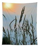 Sunrise Over Grass Tapestry