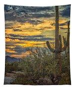 Sunset Approaches - Arizona Sonoran Desert Tapestry