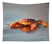 Sunset Crab Tapestry