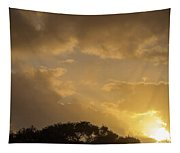 Sunset Glow 2 Tapestry