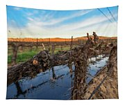 Sunset On The Vine Tapestry