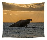 Sunset On The Wreck Of The Concrete Ship Atlantus Tapestry