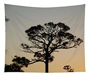 Sunsetting Thru The Trees Tapestry