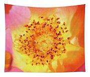 Sunshine - Hybrid Tea Rose - Macro Tapestry