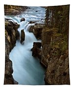 Sunwapta Falls In Jasper National Park Tapestry