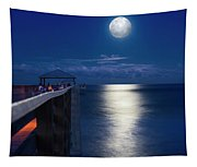 Super Moon At Juno Tapestry