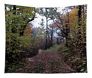 Superior Hiking Trail Tapestry