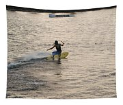 Surfing Tapestry