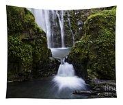 Susan Creek Falls Oregon 4 Tapestry