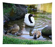 Swan And Wood Ducks Tapestry