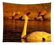 Swan Near Sundown Tapestry