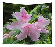 Sweet Azaleas Tapestry