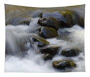 Sweet Creek Oregon 14 Tapestry