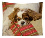 Sweet Dog Face Tapestry