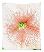 Sweet Peachy Petunia Tapestry