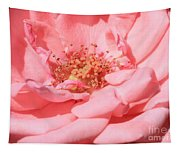 Sweet Pink Rose  Tapestry