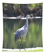 Sweet Sandhill By The Pond Tapestry