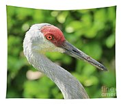 Sweet Sandhill Profile Tapestry