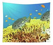 Sweetlips Tapestry