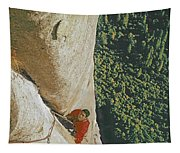 T 806610 Ed Cooper Cleaning Pitch Tapestry