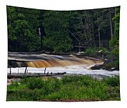 Tahquamenon Lower Falls Upper Peninsula Michigan 04 Tapestry