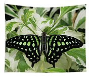 Tailed Jay Butterfly #2 Tapestry