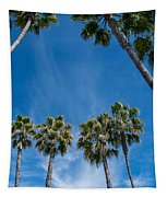 Tall Palms Meet The Sky Tapestry