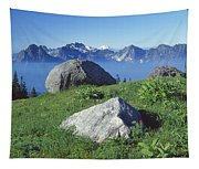 1m4862-tatoosh Range And Mt. St. Helens  Tapestry