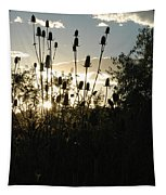 Teasel Sunset Glow Tapestry