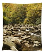 Tennessee Autumn Stream 6059 Tapestry