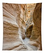 Tent Rocks Slot Canyon 2 - Tent Rocks National Monument New Mexico Tapestry