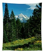 Teton Meadow Tapestry