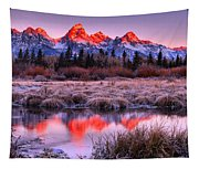Teton Reflections In The Frosted Willows Tapestry