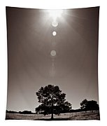 Texan Sun Tapestry