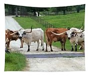Texas Cattle Guard Tapestry