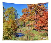 Texas Hill Country Autumn Tapestry