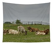 Texas Longhorns And Wildflowers Tapestry