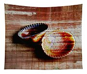 Textured Shells Tapestry
