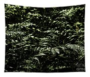 Textures Of A Rainforest Tapestry