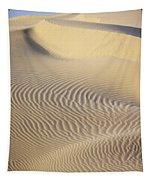 Thar Desert Dunes Tapestry