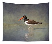 The American Pied Oystercatcher By Darrell Hutto Tapestry