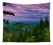 The Beautiful Olympic Mountains At Dawn - Olympic National Park, Washington Tapestry
