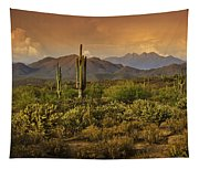 The Beauty Of The Sonoran Desert  Tapestry