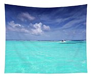 The Big Blue Tapestry