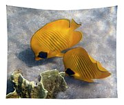 The Bluecheeked Butterflyfish Tapestry