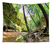 The Caves And Trail At Old Man's Cave Hocking Hills Ohio Tapestry