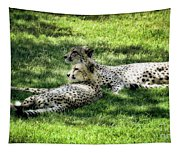 The Cheetahs Tapestry