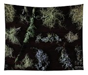 The Collection Of Lichens Tapestry