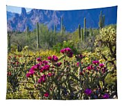 The Colorful Desert  Tapestry